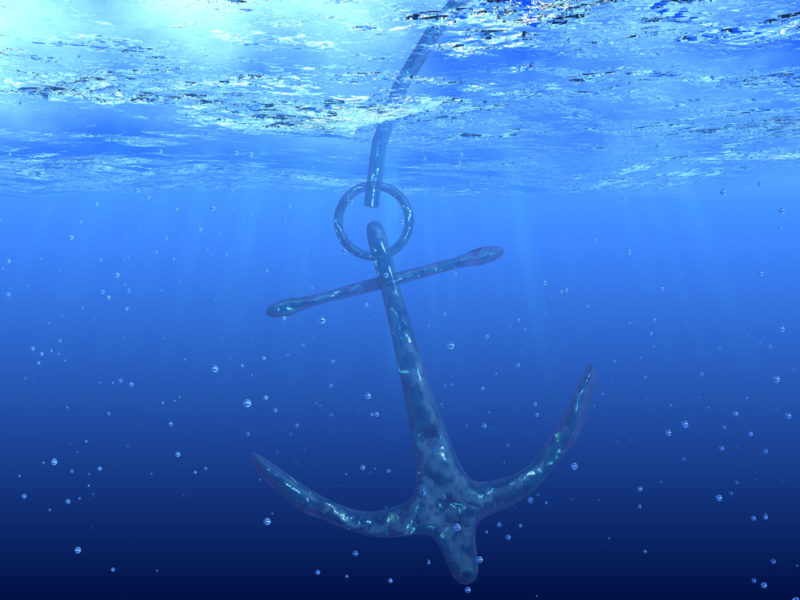 Where do you anchor your happiness? - Bev Janisch